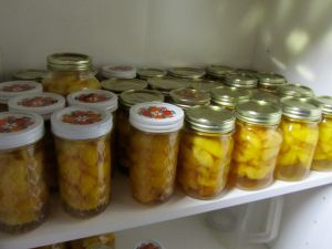 1-Peaches on shelf